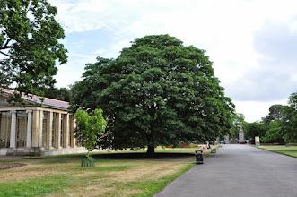 Photo: Main gate - hoofdingang - Kew