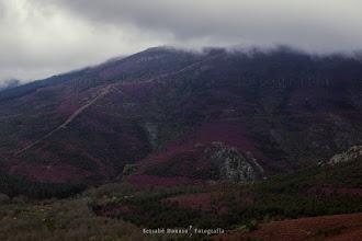 Photo: Montes cubiertos de brezo. Peña de Francia. Salamanca. España. Filtro: Polarizador  Si te gusta comparte :)  Para ver más imágenes: http://blog.betsabedonoso.com/2015/05/la-alberca_15.html