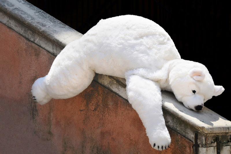 L'esausto di giacominet