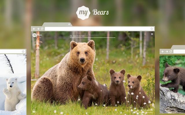 My Bears - Cute Bear Wallpapers