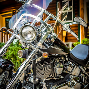 Black Harley 81217 by Anthony Balzarini - Transportation Motorcycles ( #motorcycle, #ridetolive, #biker, #davidson, #harley, #life, #photography,  )