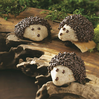 Chocolate-Pecan Hedgehog Cookies.