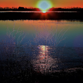Fire & Ice by Kathy Woods Booth - Landscapes Prairies, Meadows & Fields ( reflection, wetlands, colorful, waterscape, ice, marsh, reflections, sunrise )