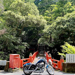 のカスタム事例画像 子龍さんの2021年08月09日08:19の投稿