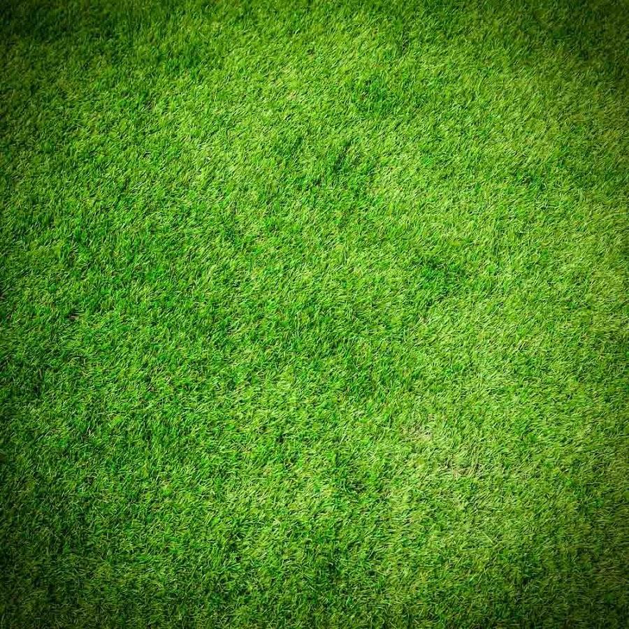 Green Grass Wallpaper- screenshot - Green Grass Wallpaper - Android Apps On Google Play