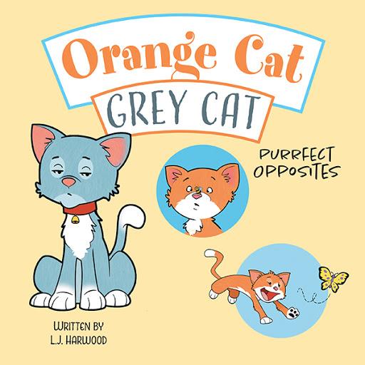 Orange Cat Grey Cat cover