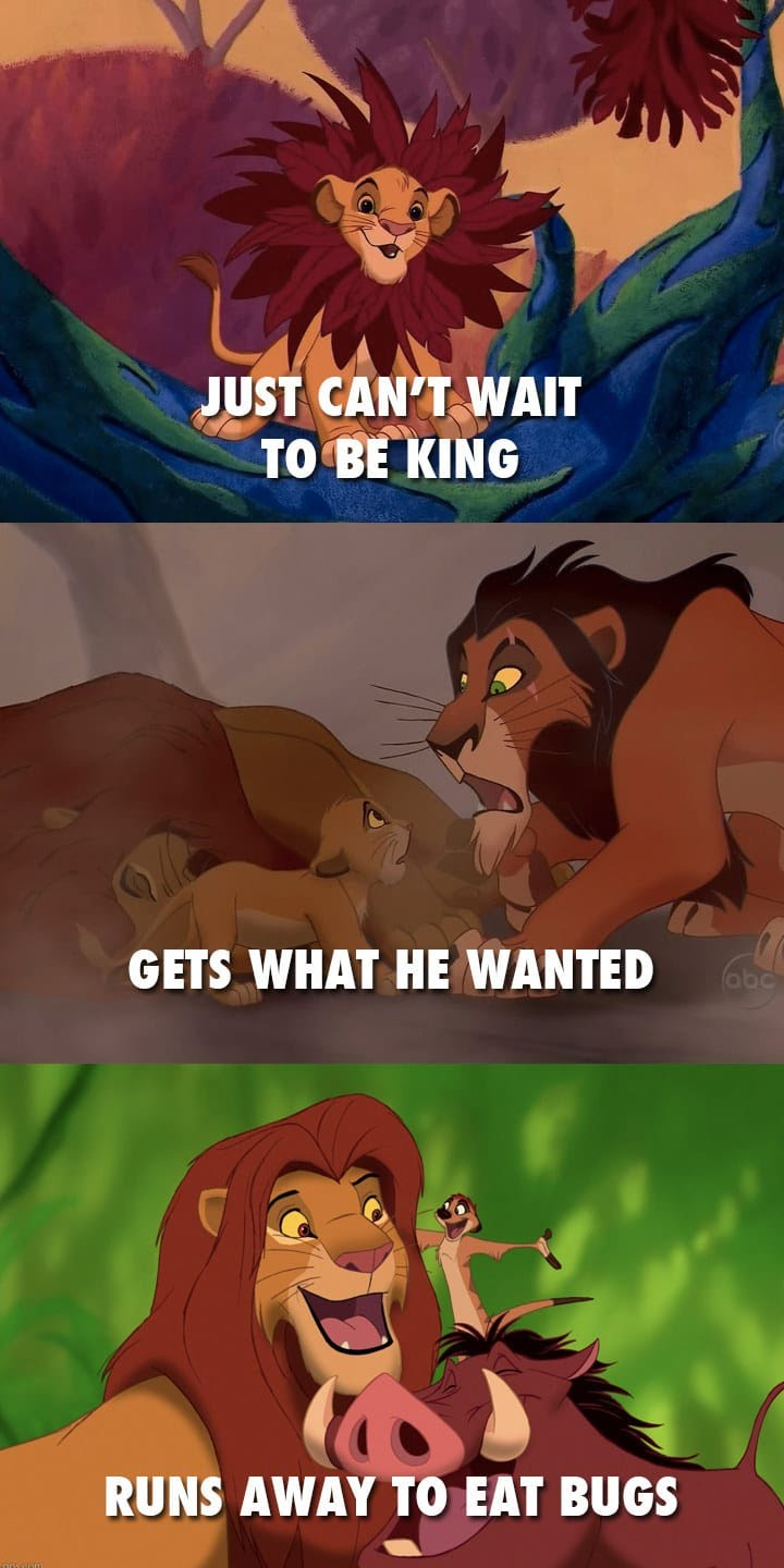 This Lion King meme is too accurate; found on Pintrest.  ( source: https://www.pinterest.com/pin/295408056807340081/ )
