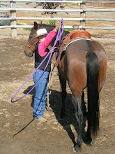 Photo: Now I will toss the loop over the rump of the horse. It will rest over the seat of the saddle.