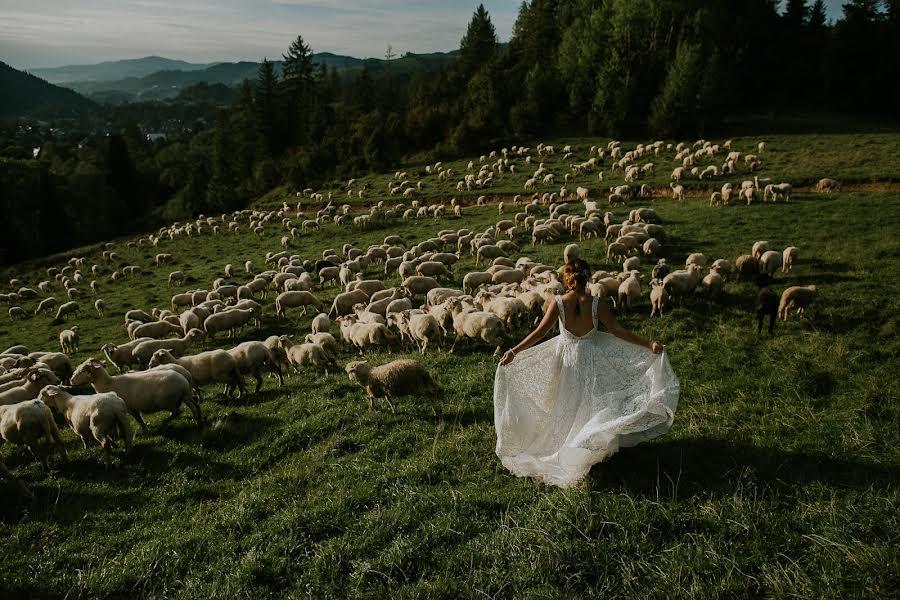 Wedding photographer Tim Demski (timdemski). Photo of 18.09.2018