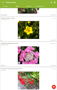 PlantNet Plant Identification Screenshot
