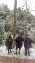 Photo: Casi ya no nieva al final del bosque.