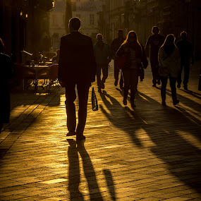 Golden shadow by Lester Woodward - City,  Street & Park  Street Scenes ( autumn, bratislava, shadow, street scene )