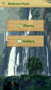 Medicinal Plants - náhled