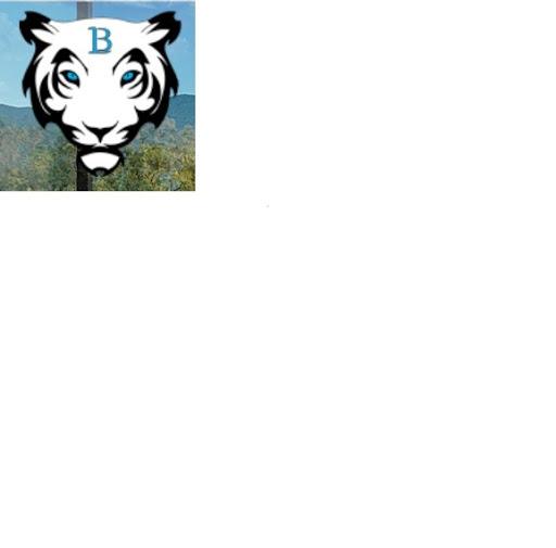Logo de BENICIMMO