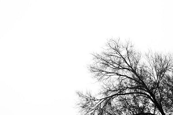 Il vuoto non mi fa paura ma... di MirkoFrignani