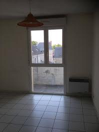 studio à Saint-Florent-sur-Cher (18)