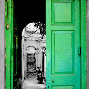 The door by Jit Rakshit - Artistic Objects Other Objects ( pwcopendoors-dq )