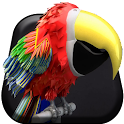 Low Polly Parrot Live Wallpape icon