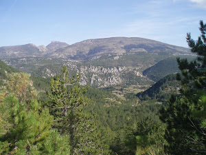 A la croisée des chemins en direction du Mont Ventoux