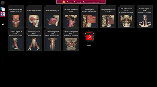 Anatomy Learning - 3D Atlas screenshot 9