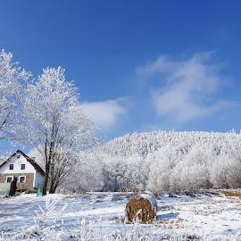krásná příroda by Marie Špilauerová - Uncategorized All Uncategorized (  )