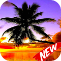Wallpaper Palm Tree APK