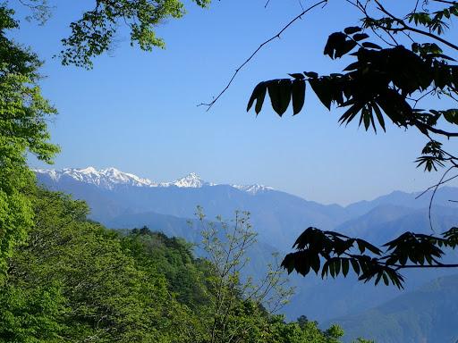 南アルプス(左から農鳥岳・間ノ岳・北岳)