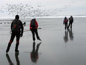 Photo: 016 Schaatsen en vogels