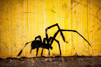 """Photo: A World Without Sound - Los Angeles, CA  Brian Eno--""""Spider and I"""""""
