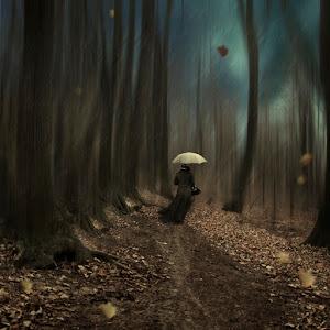 Walking into the rain.jpg