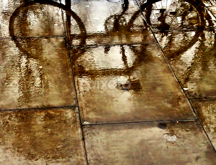wet shadow by Adrian Konopnicki - City,  Street & Park  Street Scenes