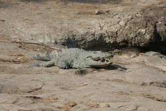 Photo: Kruger National Park. Nyawutsi Hide