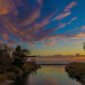 by Maksim Maksim - Landscapes Sunsets & Sunrises