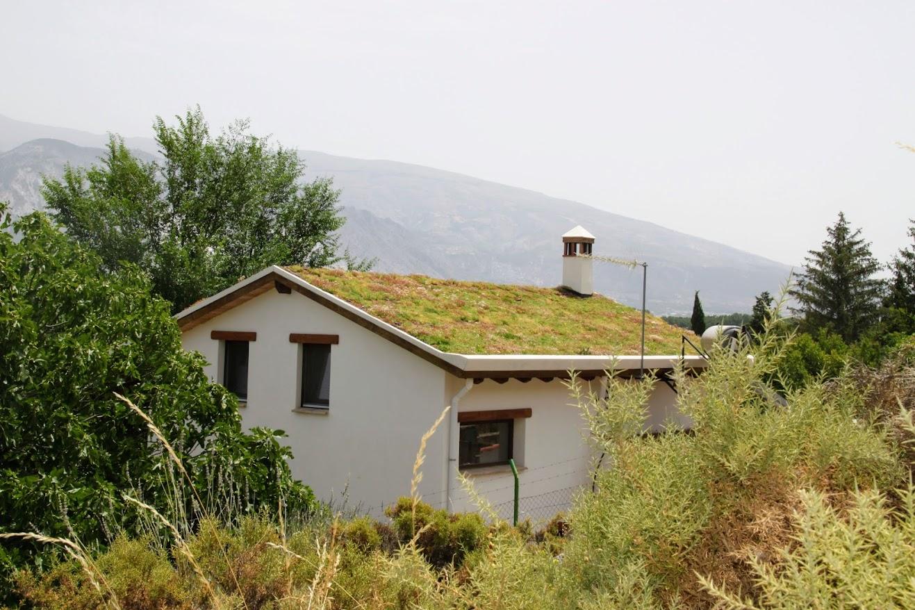 cubierta vegetal activa en Granada