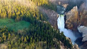 Yellowstone thumbnail