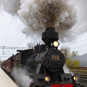 Tk3 #1136 by Simo Järvinen - Transportation Trains ( locomotive, outdoor, train, transportation, steam )
