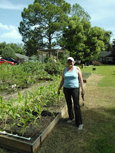 Photo: Corn Queen Patti 7/26/12