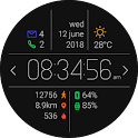 Primary Watch Face icon