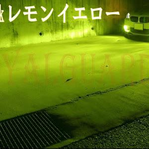 ヴェルファイア GGH25Wのカスタム事例画像 ruiruiさんの2021年01月06日19:35の投稿