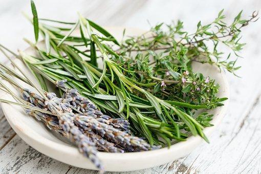 Herbs, French, Bouquet, Gourmet, Cuisine