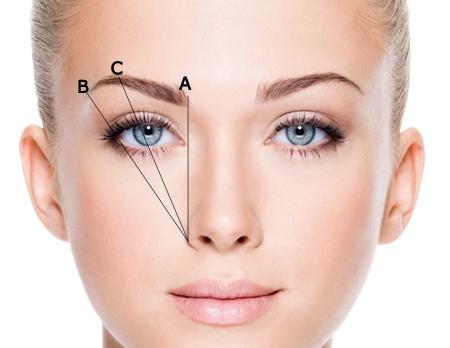 Dùng chính cây chì kẻ mày của bạn để xác định 3 đỉnh A, B, C trên lông mày. Sau đó nối 3 điểm này bằng những đường nét thật thanh mảnh, cẩn thận nhé