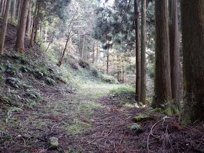林道に出る(奥はすぐに終点)