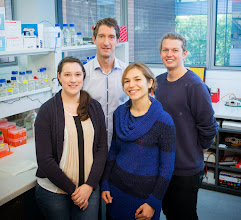 Photo: Dickins group, Australian Centre for Blood Diseases. L-R: Ms Emilia Simankowicz (Research Assistant), A/Prof Ross Dickins (group leader), Dr Margherita Ghisi (Research Fellow), Mr Oliver Le Grice (UROP student). See more about their research: http://www.acbd.monash.org/research/dickinsgroup.html