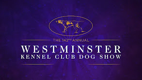 142nd Westminster Kennel Club Dog Show thumbnail