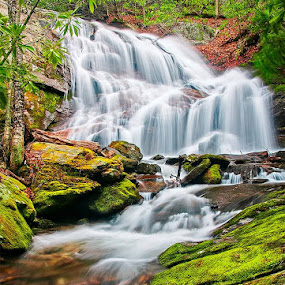 Just another Waterfall's photo! by Charles Hardin - Nature Up Close Water