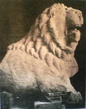 Photo: Fig. 21. Leone A da Faleri, foto.