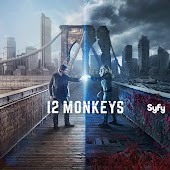 12 Monkeys (OV)