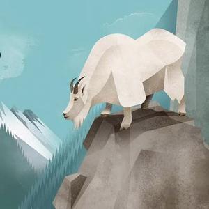 Animaux sauvages - Voyage en terre du Nord - Edition Milan - Blog illustration jeunesse - Illustre ALbert - Bookletter