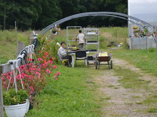 aménagement jardin maraicher biodiversité ferme aigrefoin