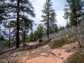 Photo: Rocky trail